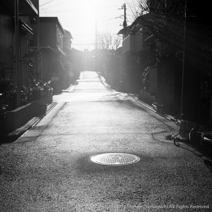 shimpeiyamaguchi-photo-1