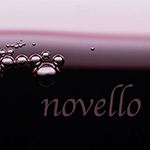 【写真展】大和田良ゼミ第3期写真展「novello(ノヴェッロ)」