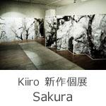 Kiiro 新作個展『Sakura』