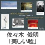 佐々木 俊明「美しい嘘」 A.W.P Selection 2018-次世代を担う写真家たち-